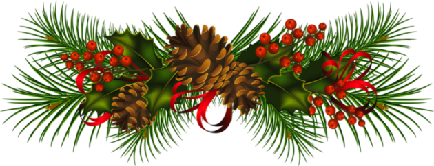 Christmas_Pine_Cones_PNG_Clipart